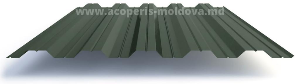 Профнастил НС 35 RAL 6005