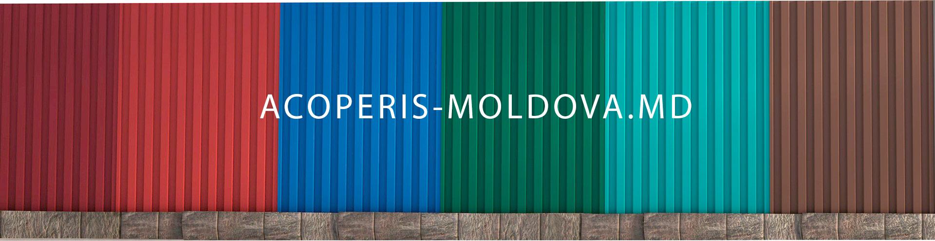 Забор из Профнастила в Молдове
